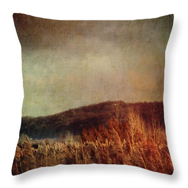 Frosty field in late winter afternoon Throw Pillow by Sandra Cunningham