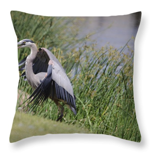 Great Blue Heron Throw Pillow by Donna Van Vlack