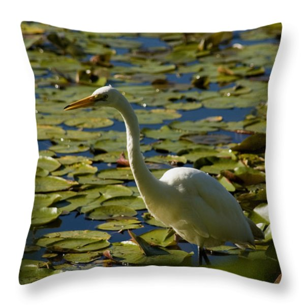 Great White Egret Perched On A Rock Throw Pillow by Todd Gipstein