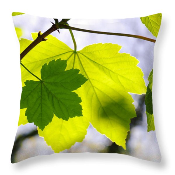 Green Leaves Throw Pillow by Carlos Caetano