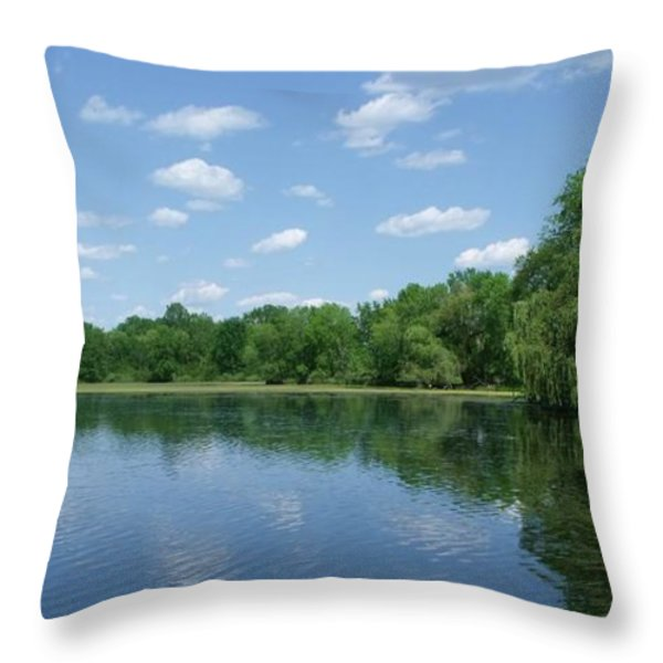 Harris Pond Throw Pillow by Anna Villarreal Garbis