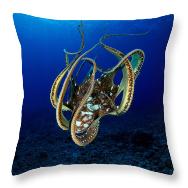 Hawaii, Day Octopus Throw Pillow by Dave Fleetham - Printscapes