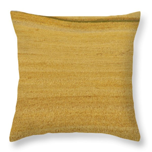 Hay Bales, Holland, Manitoba Throw Pillow by Mike Grandmailson