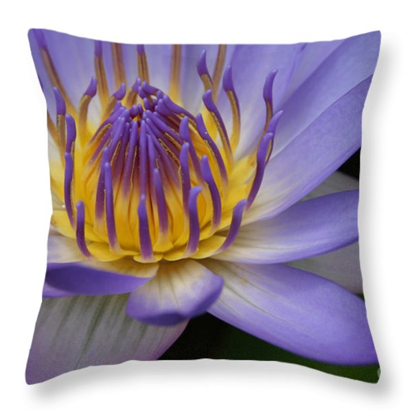 Heaven In Its Midst Throw Pillow by Sharon Mau