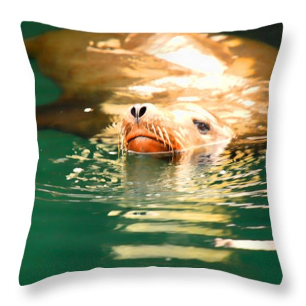 Hello Throw Pillow by Cheryl Young