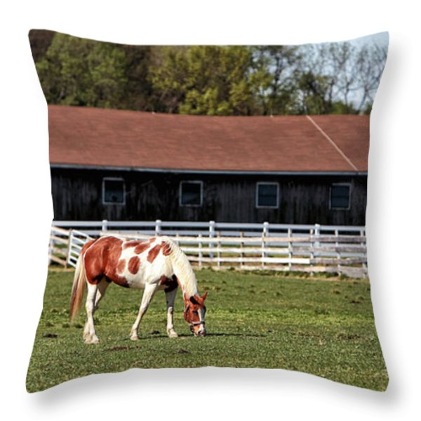 Horse Throw Pillow by John Rizzuto