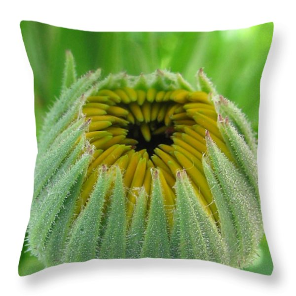 Inverted Throw Pillow by Tina Marie