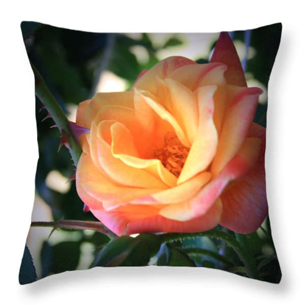 Jacob's Rose Throw Pillow by Marna Edwards Flavell