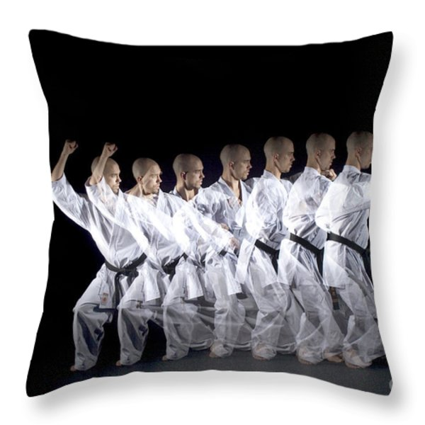 Karate Expert Throw Pillow by Ted Kinsman