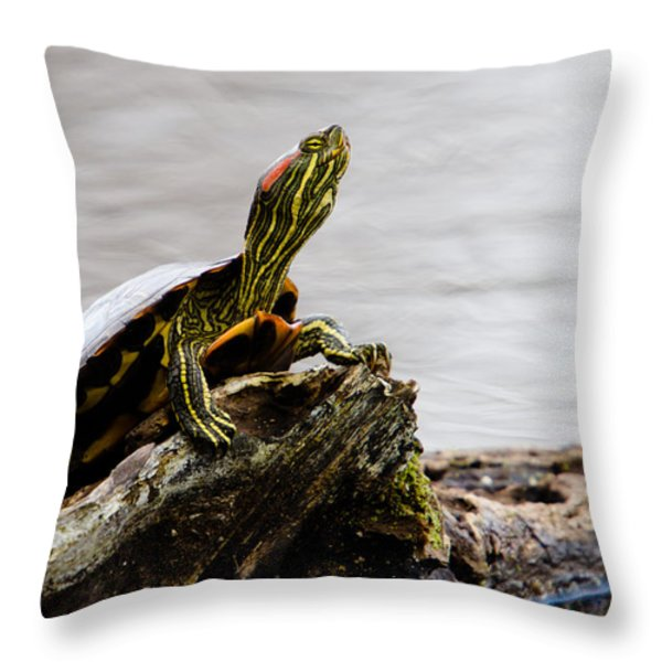 King of the Log Throw Pillow by Jason Smith