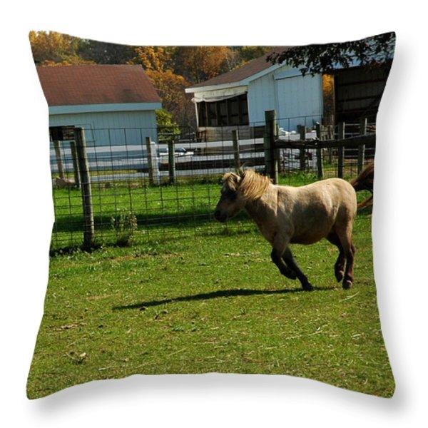 Lets Ride Throw Pillow by LeeAnn McLaneGoetz McLaneGoetzStudioLLCcom