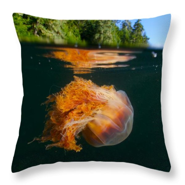 Lions Mane Jellyfish Swimming Throw Pillow by Paul Nicklen