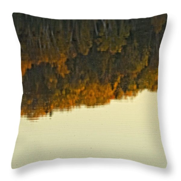 Loon In Opeongo Lake With Reflection Throw Pillow by Robert Postma