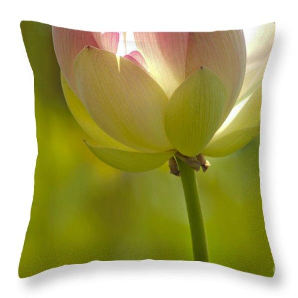 Lotus Detail Throw Pillow by Heiko Koehrer-Wagner