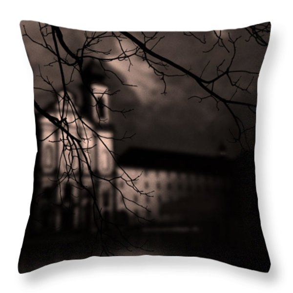 Lucerne Throw Pillow by Ron Jones