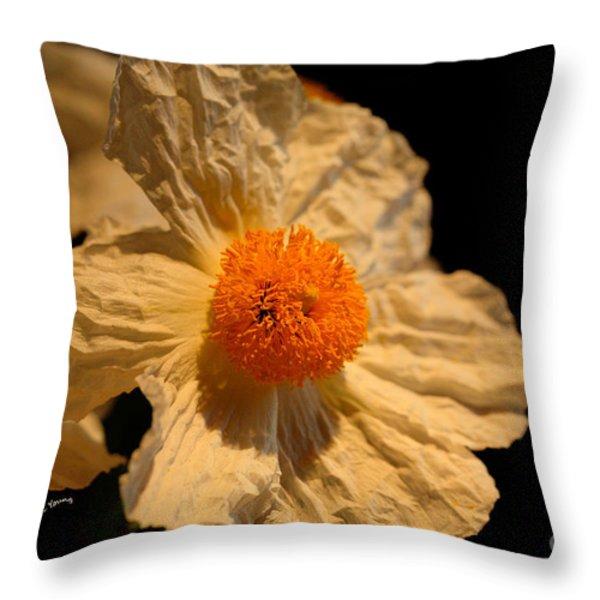 Matilija Poppy Throw Pillow by Cheryl Young