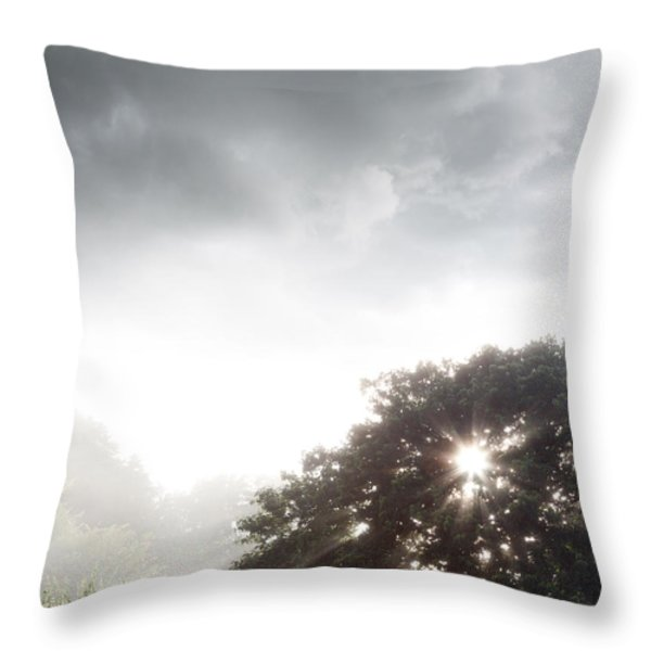 Morning Sunlight Throw Pillow by Les Cunliffe