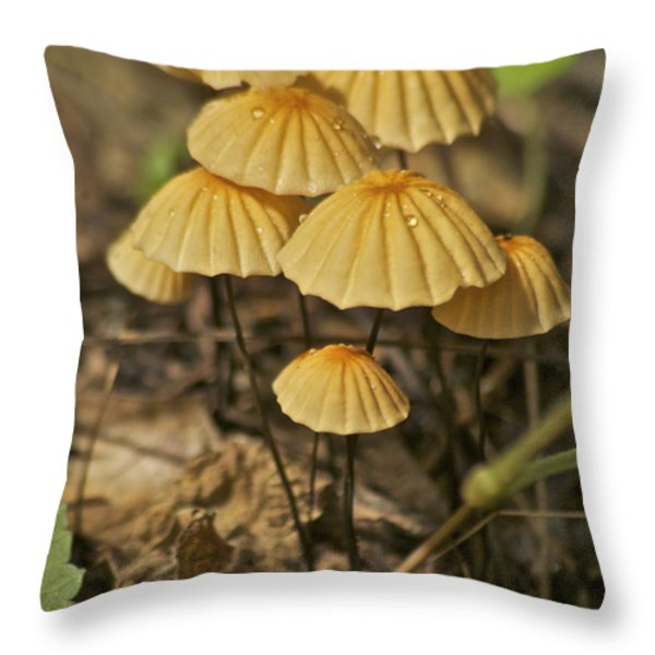 Mushrooms Throw Pillow by Michael Peychich