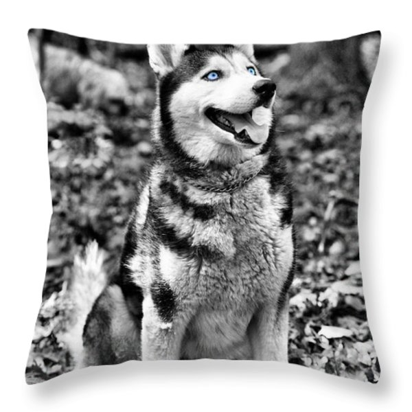 Ole Blue Eyes Throw Pillow by JC Findley