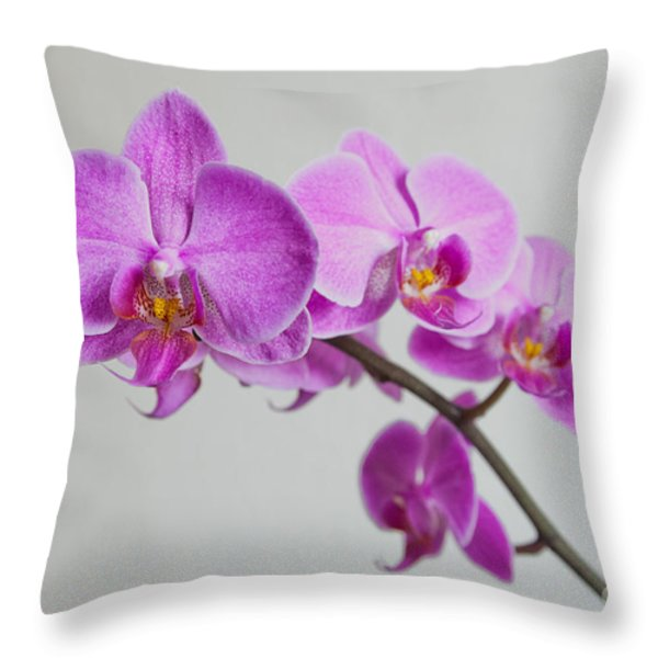 Orchid Throw Pillow by Hannes Cmarits