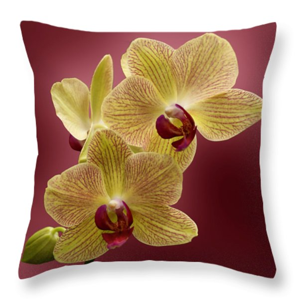 Orchid Throw Pillow by Sandy Keeton