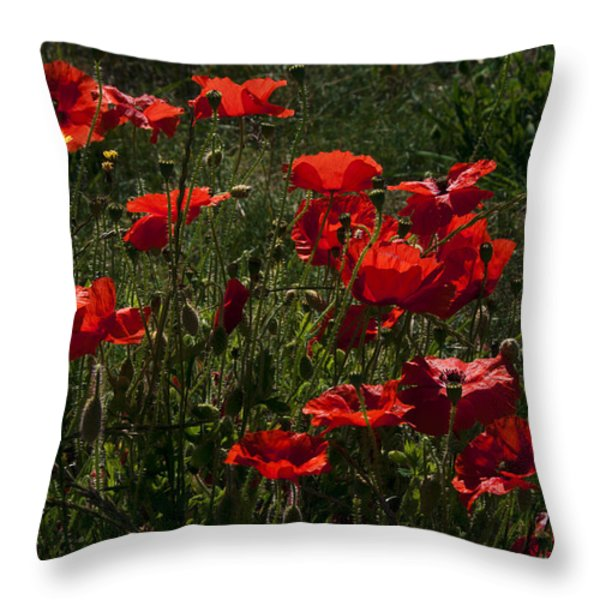 Poppies Throw Pillow by Svetlana Sewell