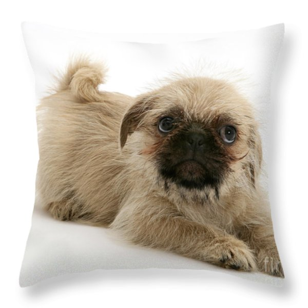 Pugzu And Pug Puppies Throw Pillow by Jane Burton