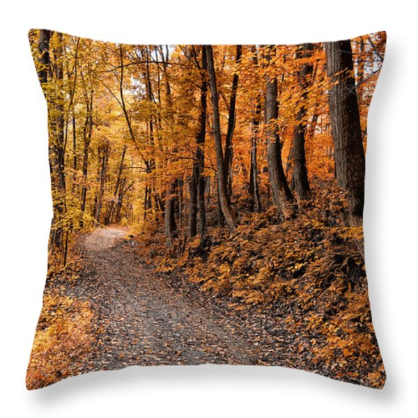 Ramble On Throw Pillow by Bill Cannon