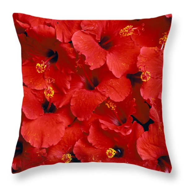 Red Hibiscus Throw Pillow by Tomas del Amo - Printscapes