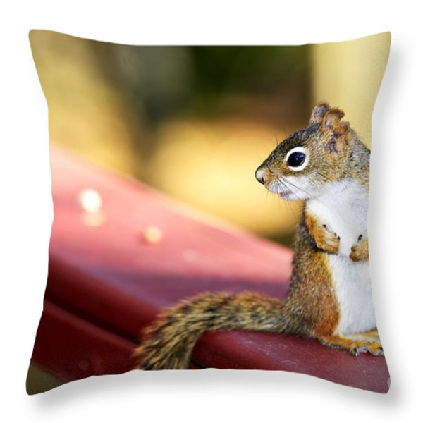 Red Squirrel On Railing Throw Pillow by Elena Elisseeva