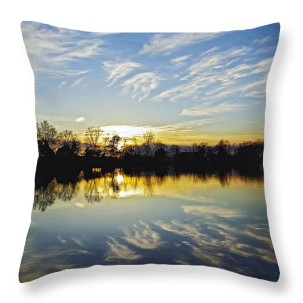 Reflections Throw Pillow by Brian Wallace