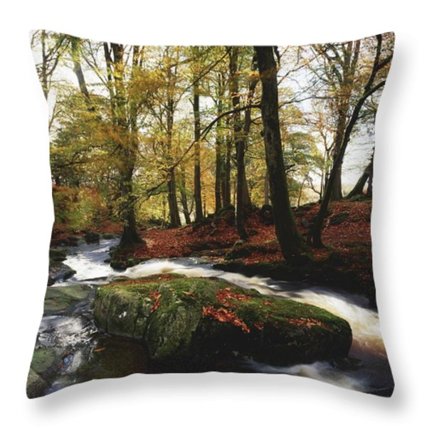 Sally Gap, County Wicklow, Ireland Throw Pillow by The Irish Image Collection