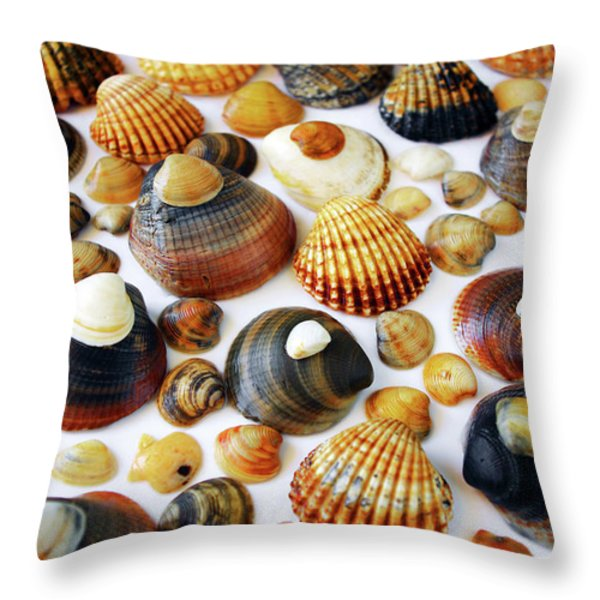 Shell Background Throw Pillow by Carlos Caetano
