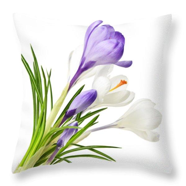 Spring Crocus Flowers Throw Pillow by Elena Elisseeva