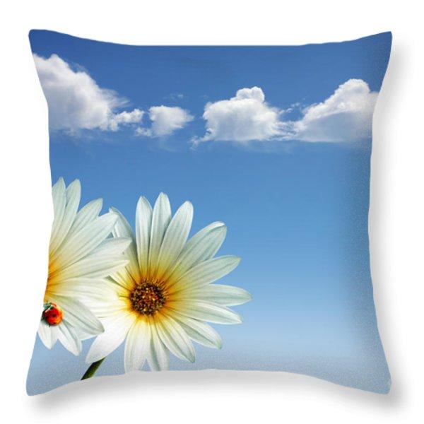 Spring Flowers Throw Pillow by Carlos Caetano