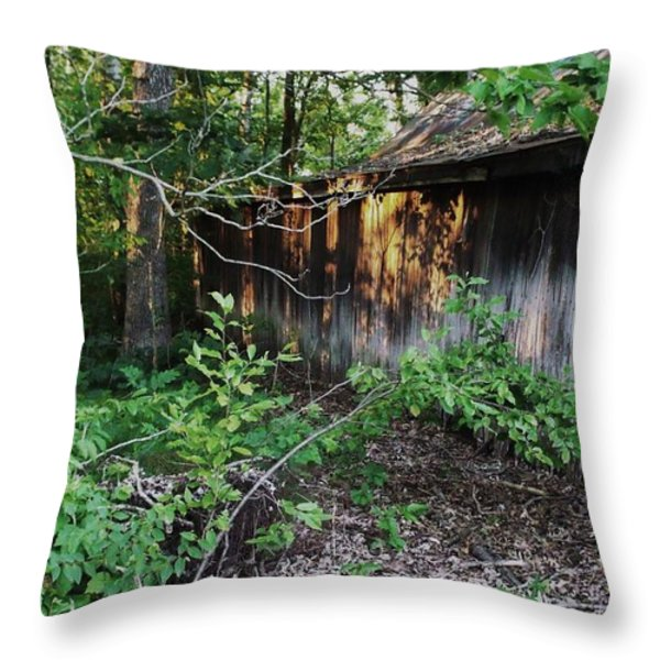 Still Standing Throw Pillow by Anna Villarreal Garbis