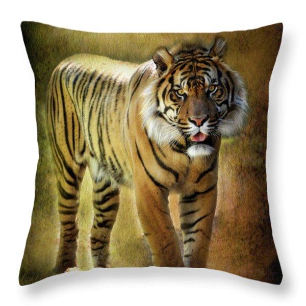 Sumatran Tiger  Throw Pillow by Saija  Lehtonen