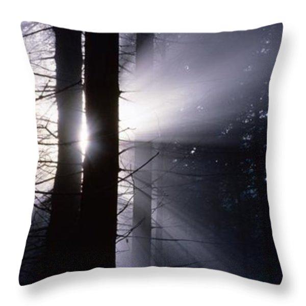 Sun breaking through mists Throw Pillow by Intensivelight