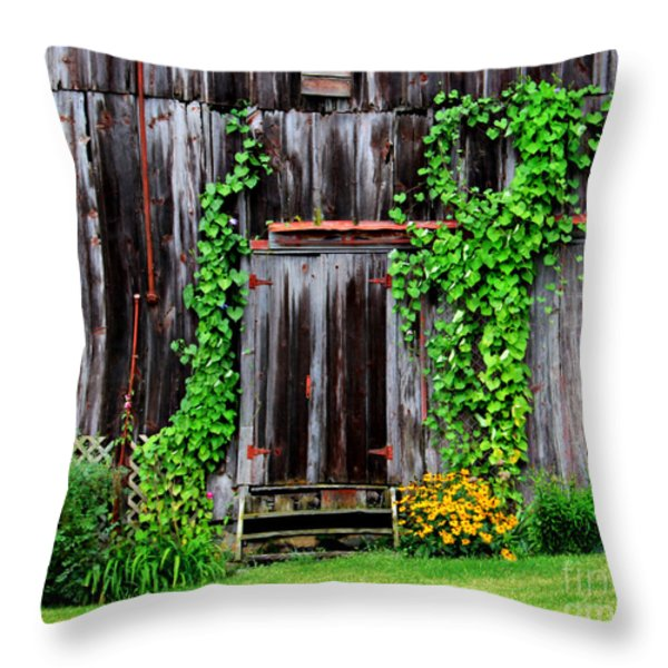 The Old Shed Throw Pillow by Perry Webster