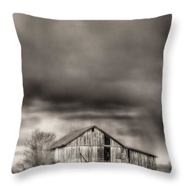 The Smell of Rain Throw Pillow by JC Findley