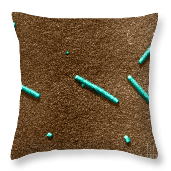 Tobacco Mosaic Virus, Tem Throw Pillow by Omikron