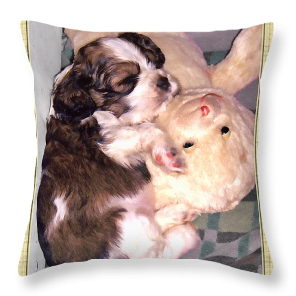 Two Stuffed Animals Throw Pillow by Debbie Portwood