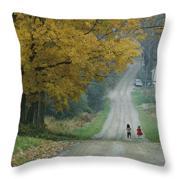 Untitled Throw Pillow by B. Anthony Stewart