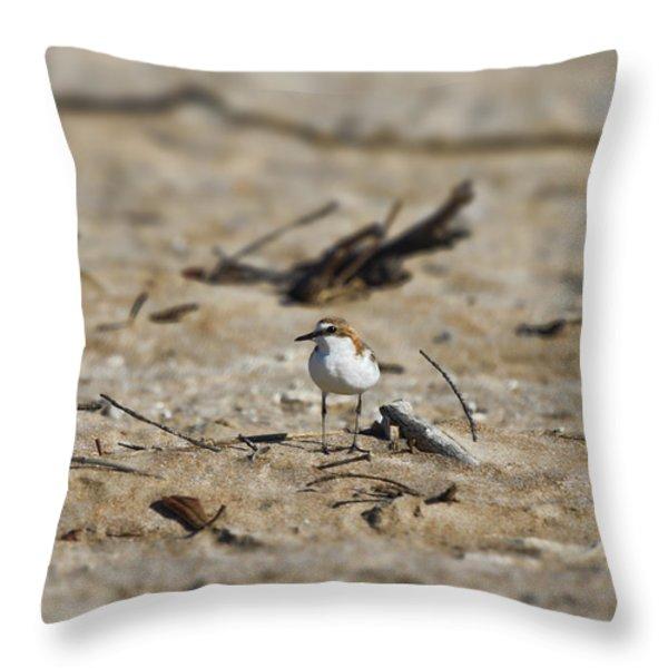 Wading Bird Throw Pillow by Douglas Barnard