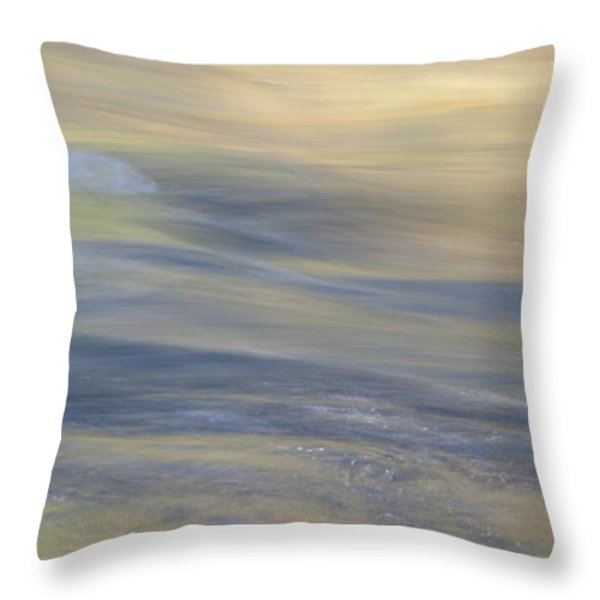 Water Impression 3 Throw Pillow by Catherine Lau