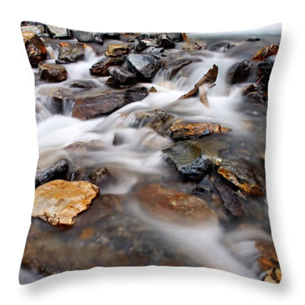 Water On The Rocks Throw Pillow by Larry Ricker