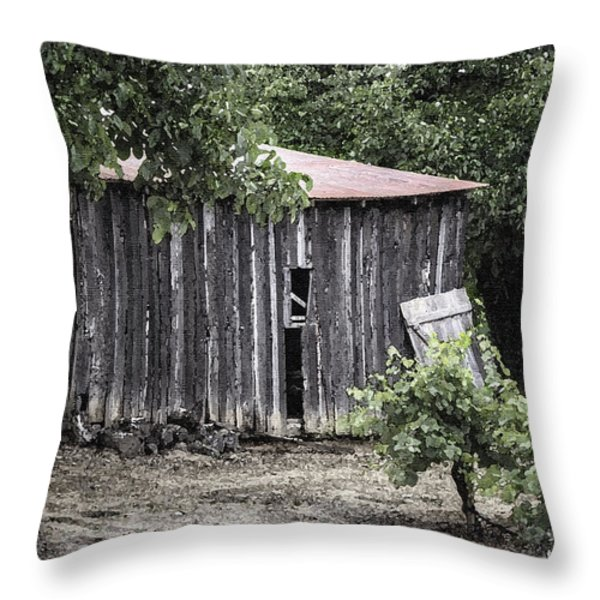Watercolor Barn Throw Pillow by Joan Carroll