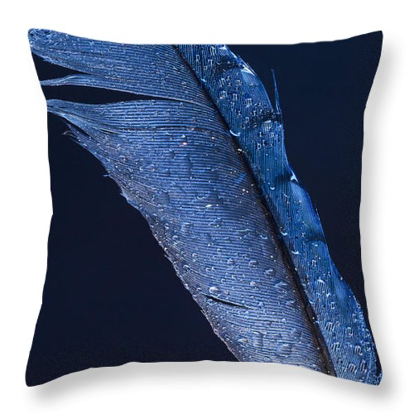 Wet Jay Throw Pillow by Jean Noren
