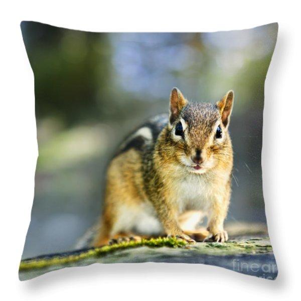 Wild Chipmunk Throw Pillow by Elena Elisseeva