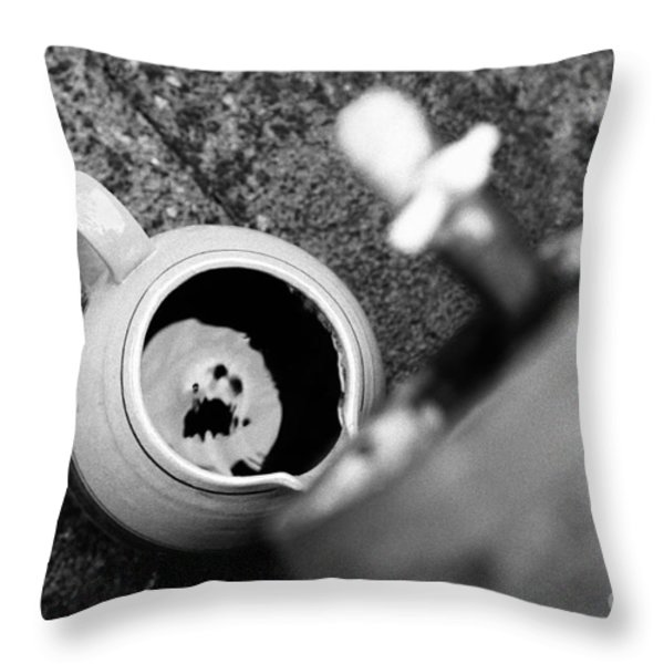 Wine Dripping Throw Pillow by Gaspar Avila